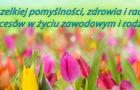 tulipany-bokrh-kolorowe